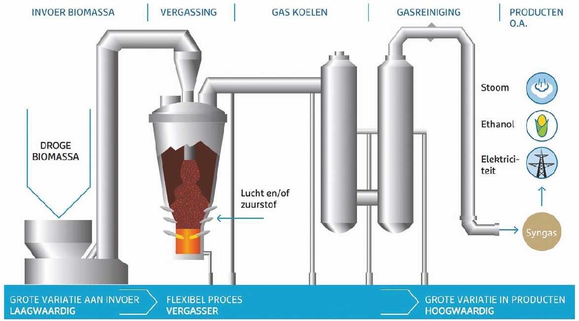 Biomassa process